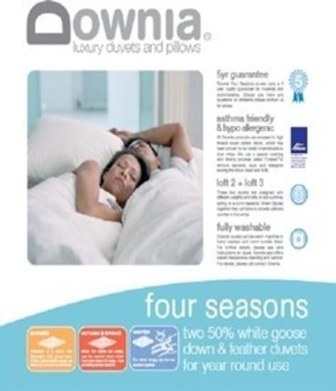 Downia four seasons